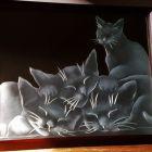 フニャムニャー 昼寝中の子猫たち
